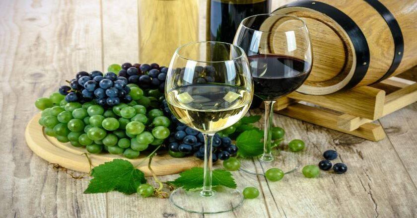 Vin i glas og druer