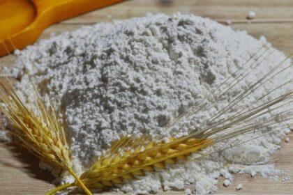 Mel på et bord med korn